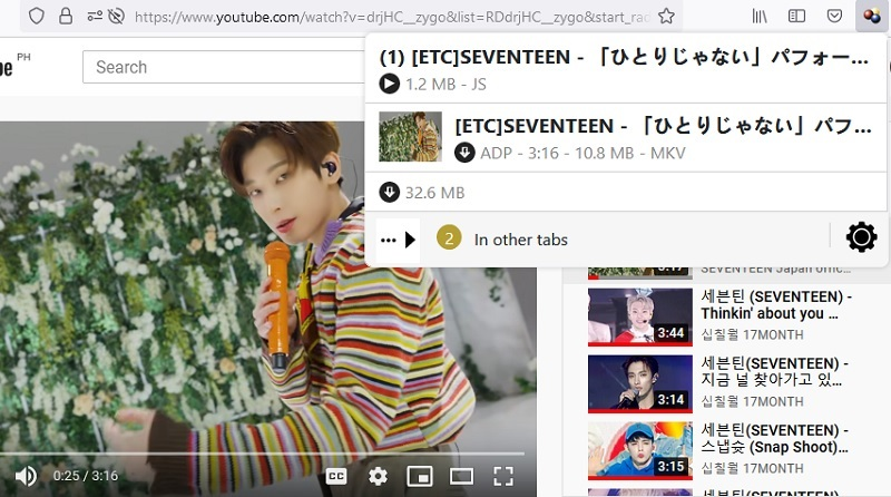 download youtube video to computer browser extension